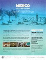 Yoga Retreat in the Riviera Maya