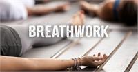 Ravens Breath: Vibrational Alchemy