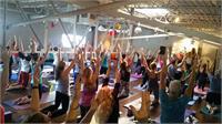Live Yoga w/ Steve Liddell LIVE