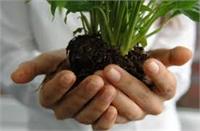 Earth Day Grounding & Calming Nidra