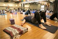 Restorative & Massage Workshop