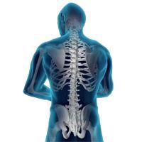 Yoga Daya - Tulsi Laher: Scoliosis Workshop